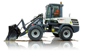 CroppedImage350210-TerexCE-CompactWheelLoaders-TL100.jpg